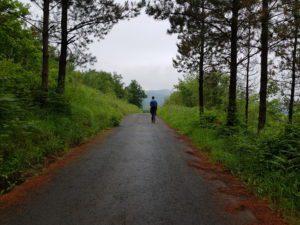 Compostelle Camino del Norte Gernika