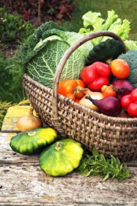 BONNE-ALIMENTATION-EN-HIVER-Panier-de-légumes-Danival.jpg