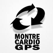 blog montre cardio gps - Garmin Fenix 5S